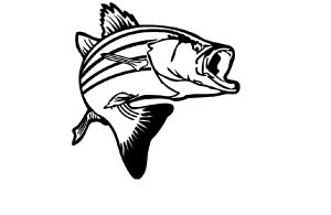 Reel Fishing Striper Guide | Guided Fishing On Lake Texoma