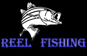 reel-fishing-logo_300x95