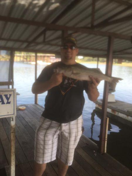 Big Fish Striper Fishing On Lake Texoma (22)